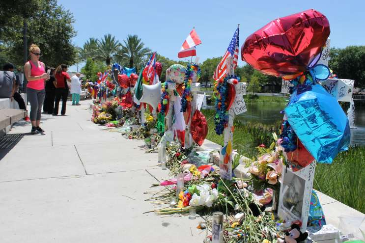 49 handmade crosses are lined up across the road from ORMC. Photo: Matthew Peddie, WMFE