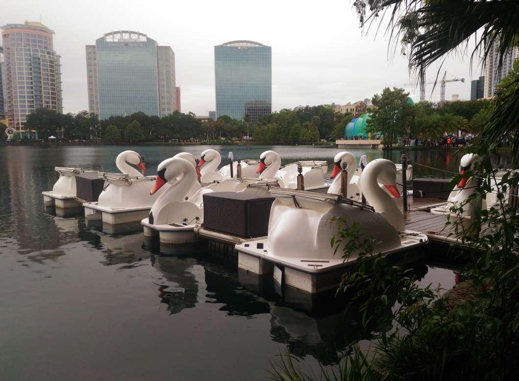 Lake Eola swan boats