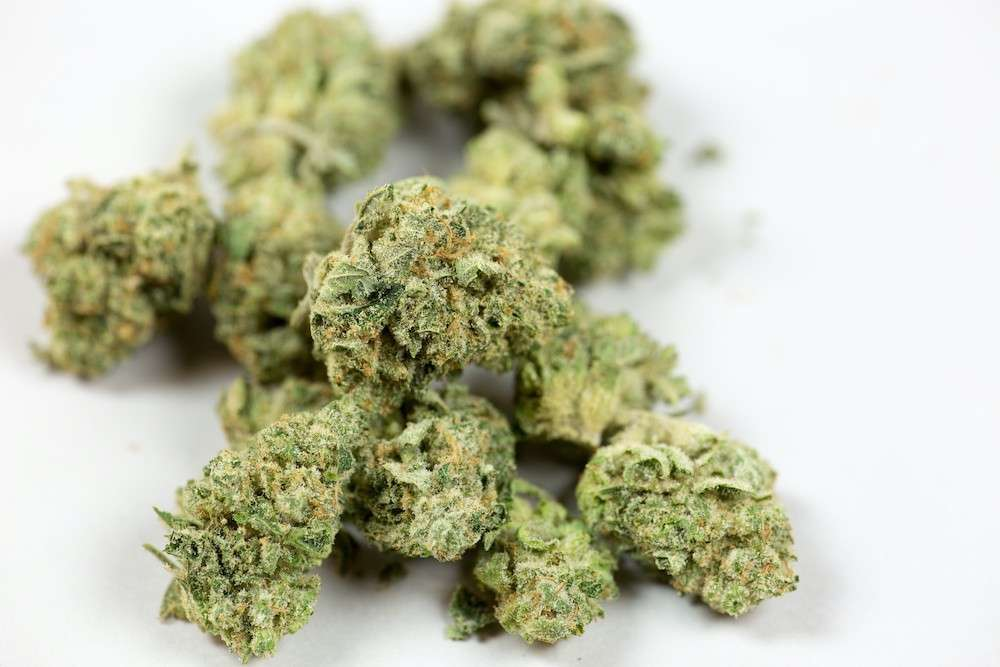 Image: Cannabis, adobe Orlandoweekly.com
